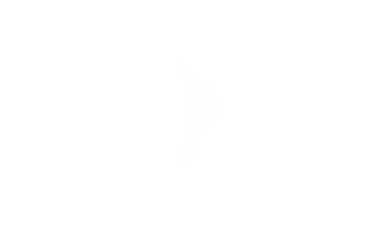 WEDDING STORY TELLERS Logo